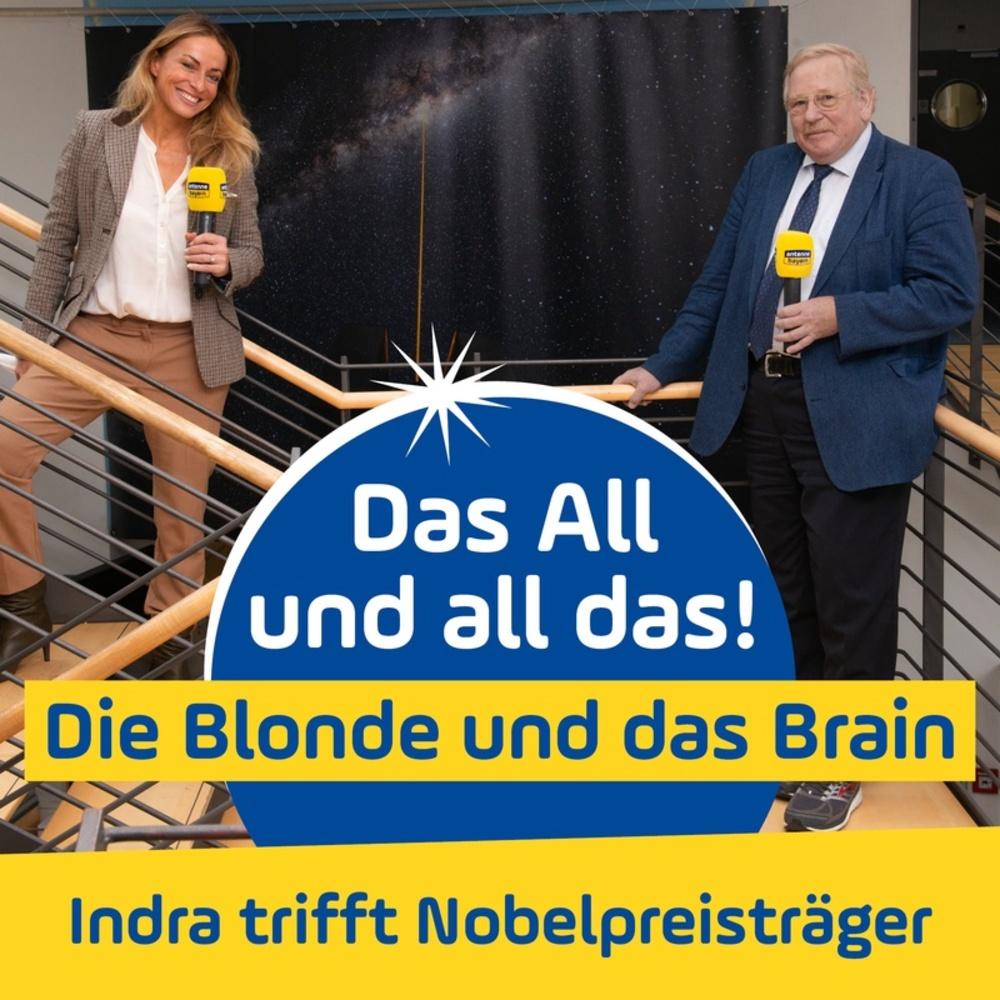 Das All und all das – Die Blonde und das Brain
