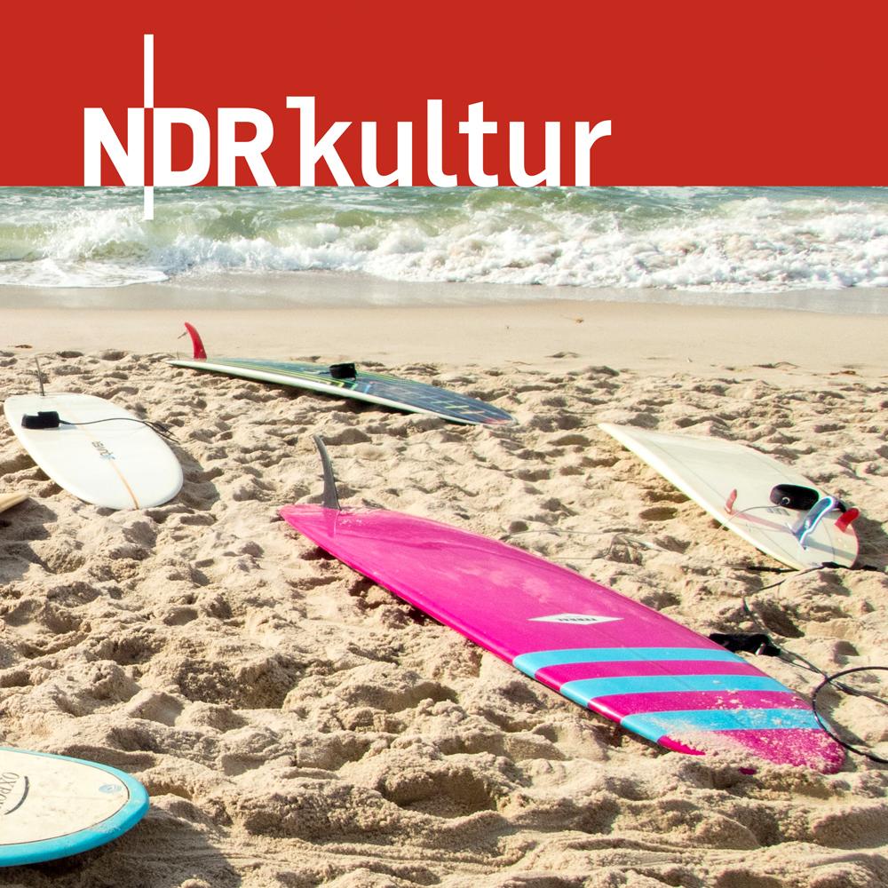 Surfology – oder Bretter, die die Welt bedeuten
